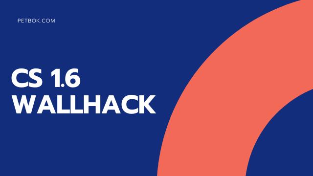 cs 1.6 wallhack