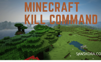 minecraft kill command