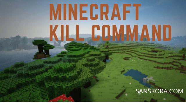 minecraft kill command